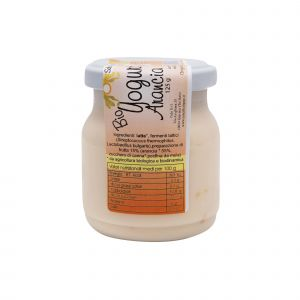 Yogurt all'Arancia 125 G