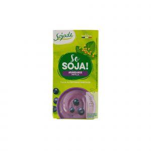 Dessert di Soia al Mirtillo Sojade 200 G